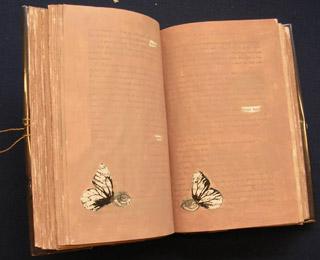 2-book-of-illusions.jpg