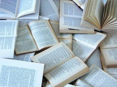 http://bibliostoria.files.wordpress.com/2009/05/libri.jpg