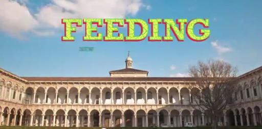 interni feeding